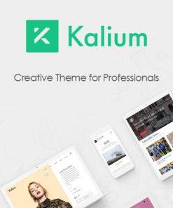 Kalium-–-Creative-Theme-for-Professionals