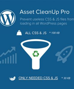 Asset-CleanUp-Page-Speed-Booster-PRO