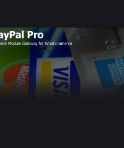 PayPal-Pro-Payment-Module-for-WooCommerce